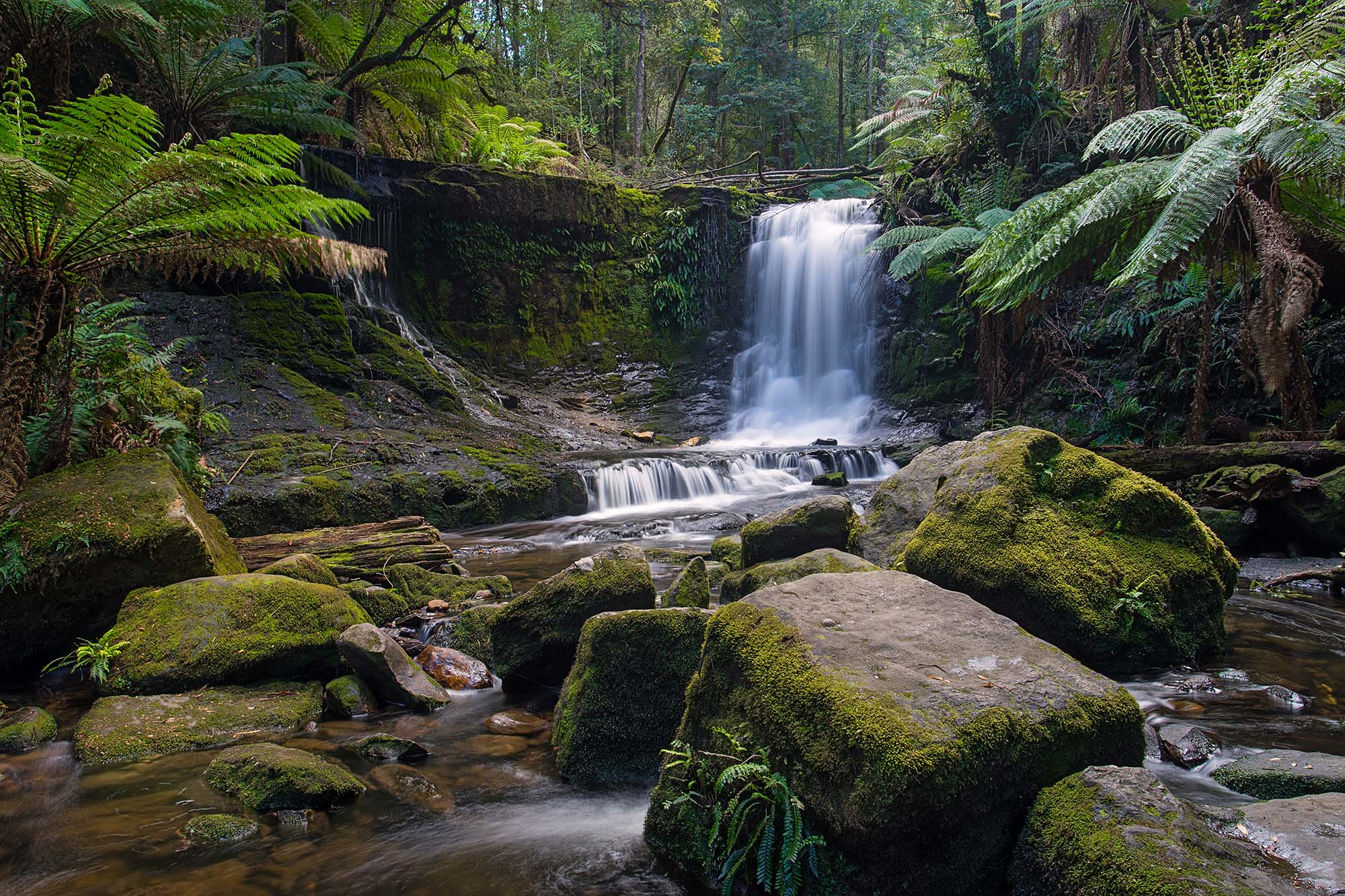Horseshoe Falls in Mount Field National Park near Hobart, Tasmania, Australia